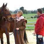 HRV Hero Horse Demos